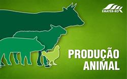 PROD-ANIMAL