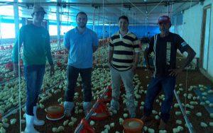 Produção tecnificada e profissionalizada para os agricultores.