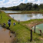 Treinamento agilizará autorização de outorga e licença ambiental para piscicultores