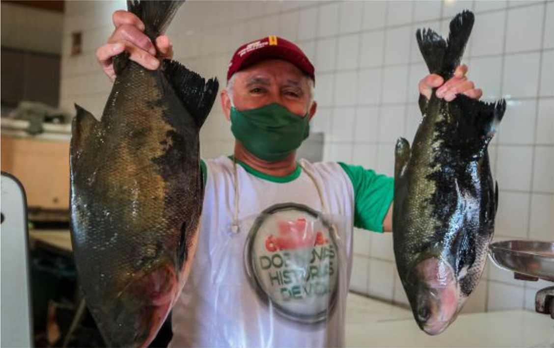 """O Programa """"Peixe Saudável"""" garante a rastreabilidade dos peixes produzidos em Rondônia, em busca da qualidade e da renda para o produtor."""
