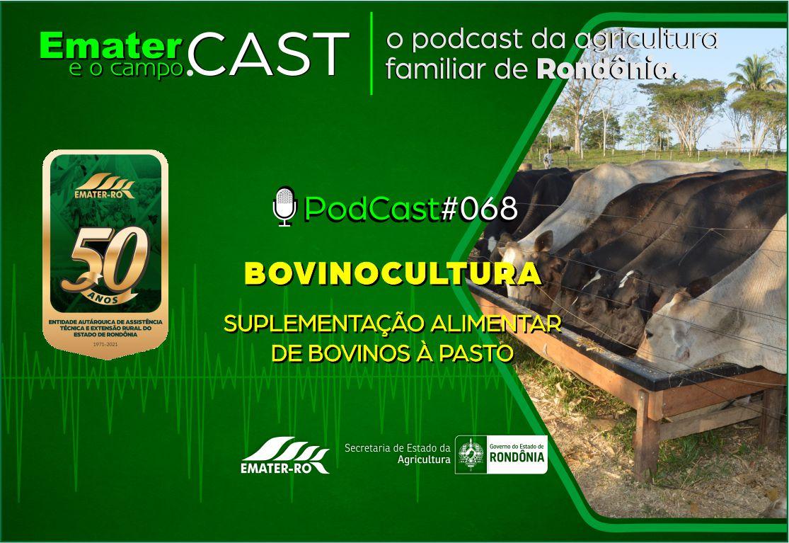 PodCast#068-Suplementação alimentar de bovinos